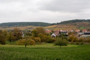 _DSC9262_Alsace